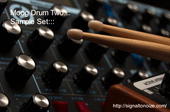 Eric Beam Moog Drum Two