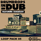Loopmasters Drumdrops In Dub Vol. 2 Pack 5