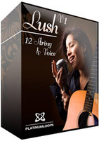 Platinum Loops Lush V1 - 12 String Guitar & Voice