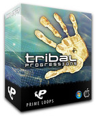 Prime Loops Tribal Progressions