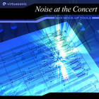 Virtuasonic Noise at the Concert