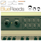 Mokafix Audio Blue Reeds