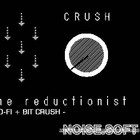 NoiseSoft The Reductionist