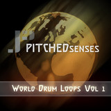 Pitched Senses: World Drum Loops Vol 1