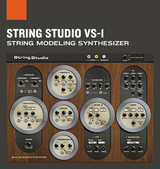 Applied Acoustics Systems String Studio VS-1