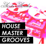 Artis Audio House Master Grooves Vol 1