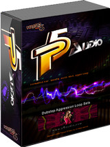 P5Audio Dubstep Aggression