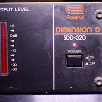 Roland Dimension D