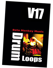 Beta Monkey Music Drum Werks XVII