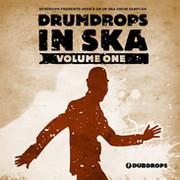 Loopmasters Drumdrops In Ska