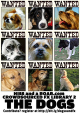 Dogs wanted!
