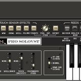 AM Music Pro SoloVst