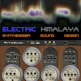 Electric Himalaya / AAS String Studio VS-1