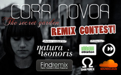 Cora Novoa Remix Contest