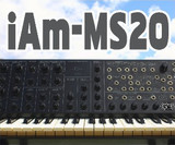 Goldbaby iAm-MS20