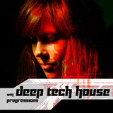 Wolsfraektroes Deep Tech House Progressions
