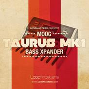Loopmasters Moog Taurus MK 1 - Bass Expander