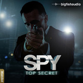 Big Fish Audio Spy: Top Secret