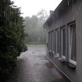 Chuck Russom FX December Rain