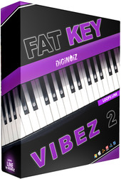 Diginoiz Fat Key Vibes 2