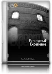 Analogfactory Paranormal Experience
