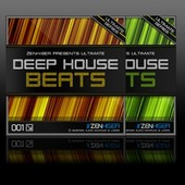 Zenhiser Deep House Beats