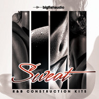Big Fish Audio Sweat: R&B Construction Kits
