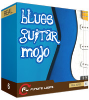 Future Loops Blues Guitar Mojo
