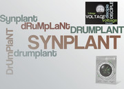 Voltage Disciple DrumPlant