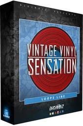 Diginoiz Vintage Vinyl Sensation