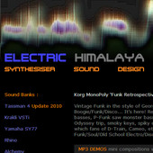 Electric Himalaya
