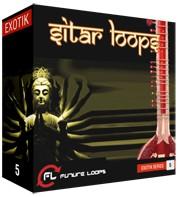 Future Loops Sitar Loops