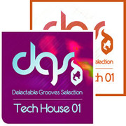 Delectable Grooves Collection Minimal Tech 01 & Tech House 01