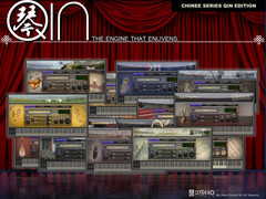 Kong Audio Chinee Series QIN Edition