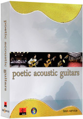 Best Service Poetic Acoustic Guitars