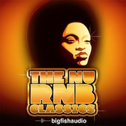 Big Fish Audio The Nu RnB Classics