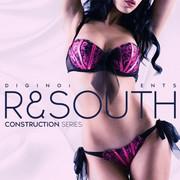 Diginoiz R&South
