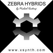 XSynth Hybrids