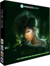 Producer Loops Melodic RnB Vol 5