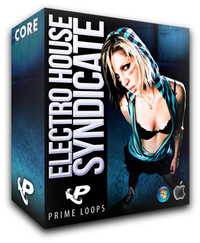Prime Loops Electro House Syndicate