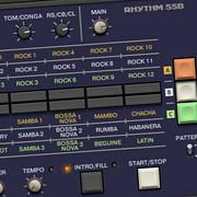 Forgotten Keys Korg Rhythm 55B