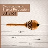 Samplephonics Electroacoustic Shaker Percussion
