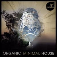 SPF Samplers Organic Minimal House