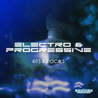 Equinox Sounds Electro & Progressive Kits & Vocals