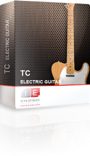 Ilya Efimov TC Electric Guitar