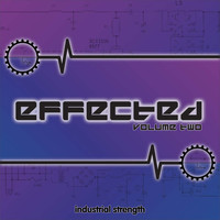 Industrial Strength Records Effected Vol 2