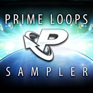 Loopmasters Prime Loops Label Sampler