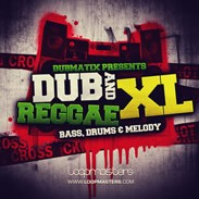 Loopmasters Dubmatix Dub &amp; Reggae XL