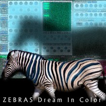 Vintage Synth Pads Zebras Dream in Color