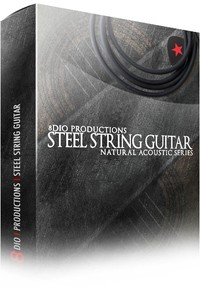8Dio Productions Steel String Guitar